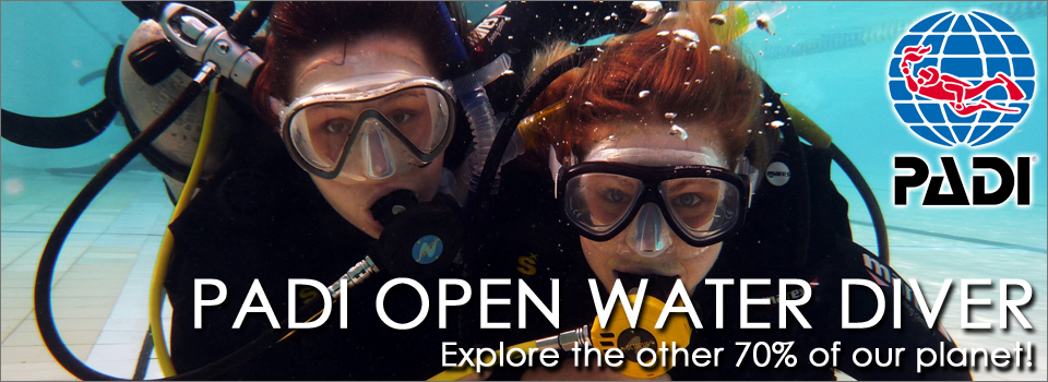 Private or Group Bookings for our PADI Open Water Diver Course