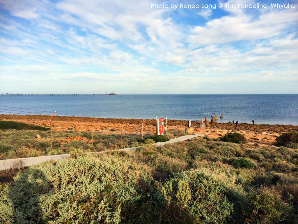 Diving At The Fenceline Whyalla Shore Dive