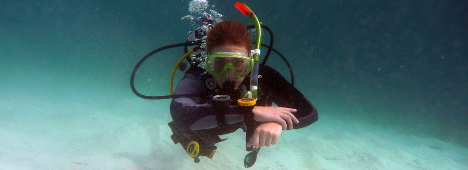 PADI Underwater Navigator Specialty Course by Diving Adelaide