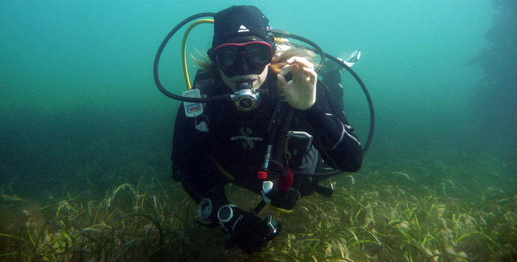 Why Diving In Winter In South Australia Is So Awesome