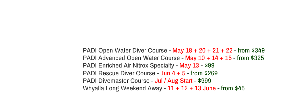Upcoming PADI Courses in Adelaide