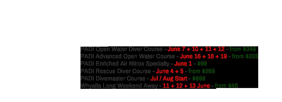 Upcoming PADI Dive Courses