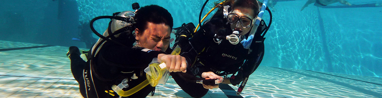 Teach PADI Skills To Perfection on the PADI Divemaster Course