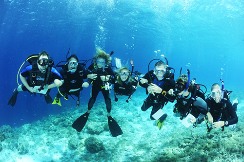 PADI Beginner Dive Courses in Adelaide