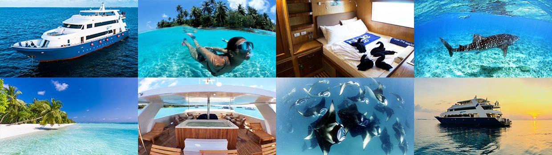 Maldives Master Liveaboard Trip 2020
